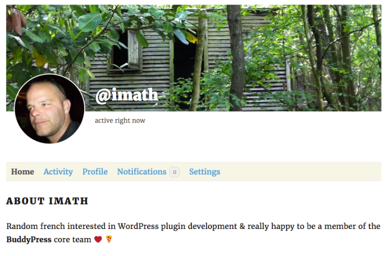"An example using the WordPress ""Biographical Info"" field"