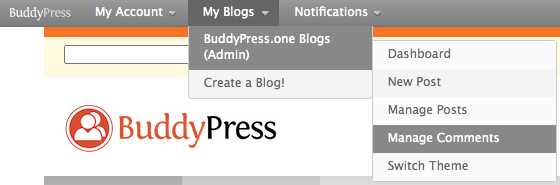 Screenshot of the BuddyBar